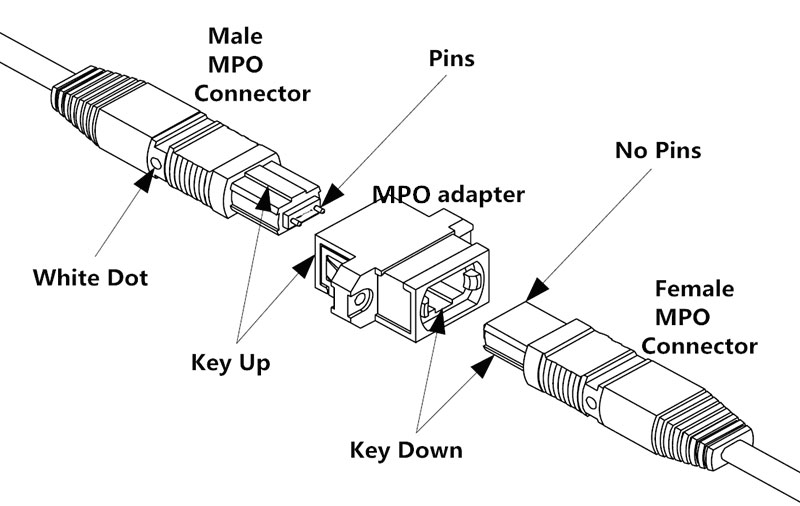 mtp-mpo-connections.jpg